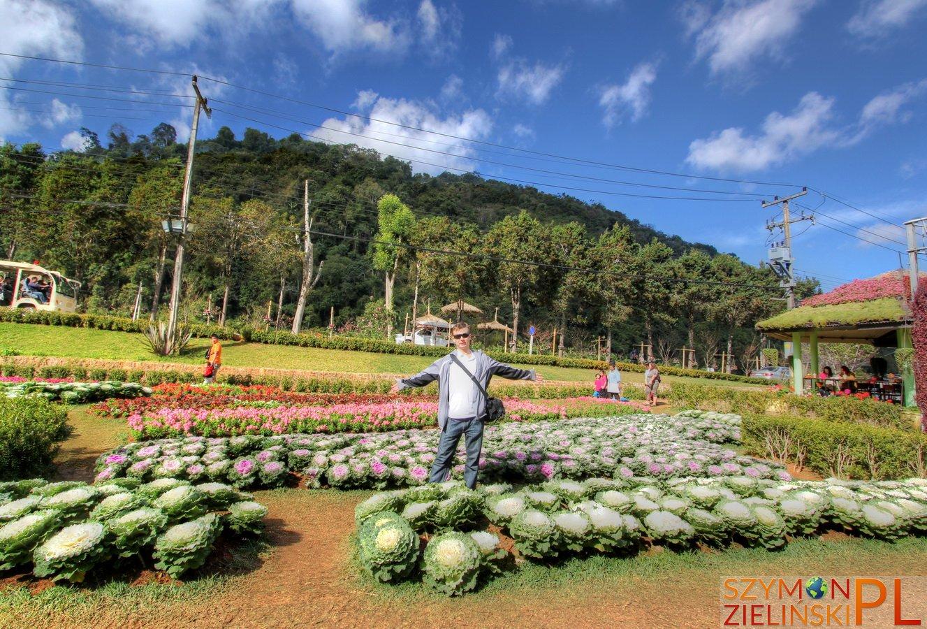Doi Ang Khang Royal Agricultural Station, Chiang Mai province, Thailand