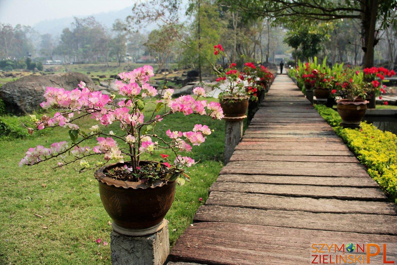 Doi Phahompok National Park, Chiang Mai province, Thailand